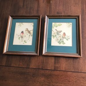 Vintage Bird Prints framed set of 2